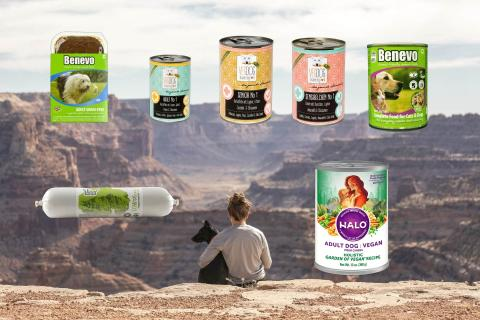 wet vegan dog food choices article banner