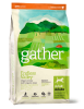 Petcurean Gather Endless Valley Vegan Recipe Dog Food